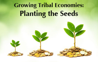 banner for Growing Tribal Economies Workshops
