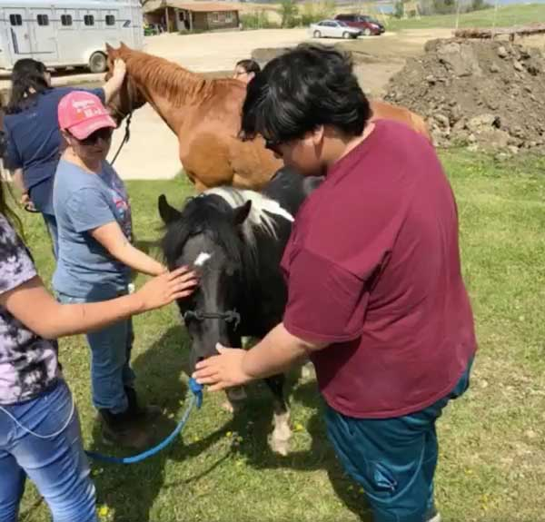 Youth work with horses during Grandmother Earth Traditional Knowledge Camp
